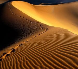 Aa-3-pustiniata-Namib